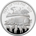 10 Pounds 2019, United Kingdom (Great Britain), Elizabeth II, Chinese Zodiac, Year of the Pig