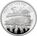 2 Pounds 2019, United Kingdom (Great Britain), Elizabeth II, Chinese Zodiac, Year of the Pig